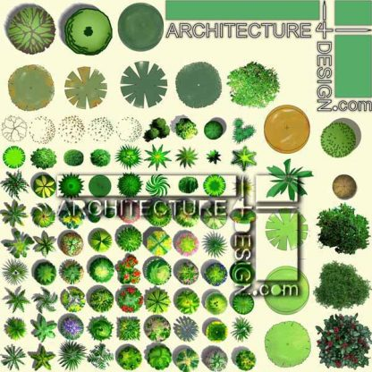trees plan for architectural photoshop presentation