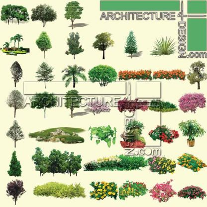 Trees and shrubs elevation for architectural rendering