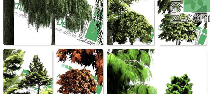 High-resolution cut-out trees: collection 2 (PNG format)