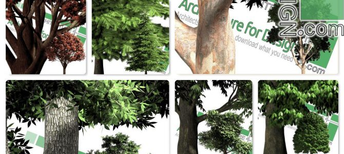 High-resolution cut-out trees: collection 1 (PNG format)