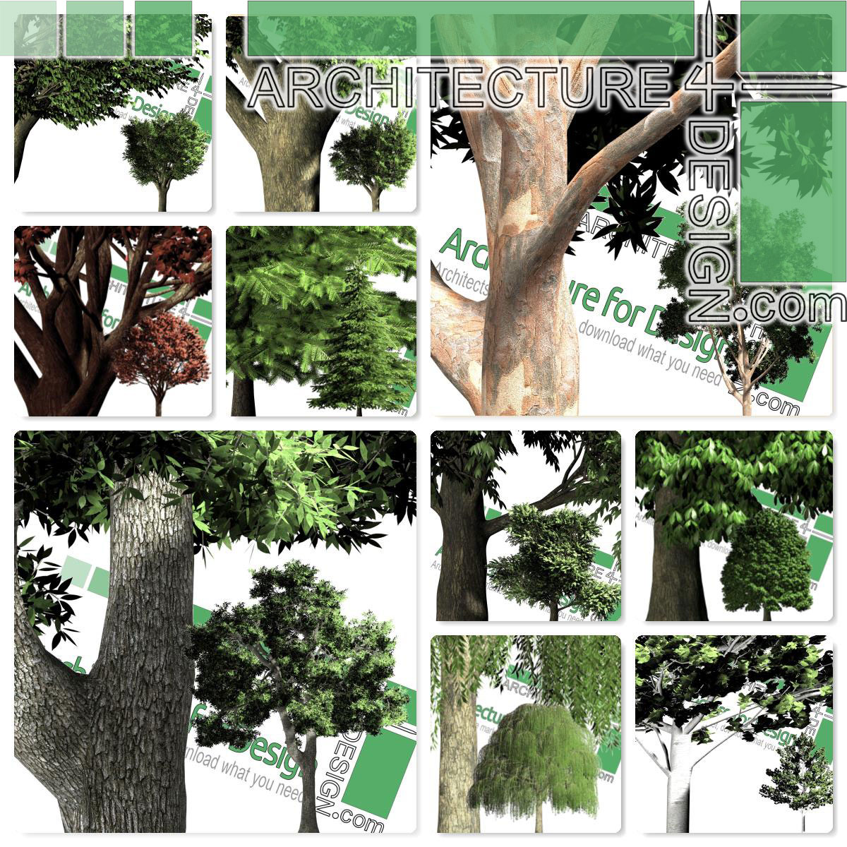 hogh-resolution cut-out trees