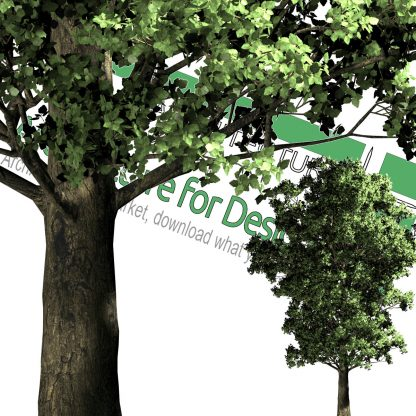best cut-out trees png