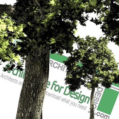 high-resolution cut-out png trees