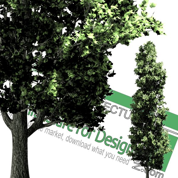 high-resolution cut-out trees
