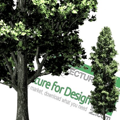 high-res png cut-out trees