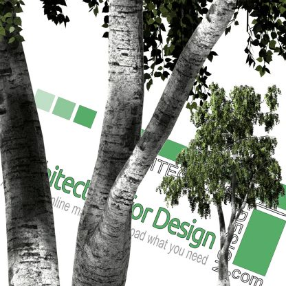 cut out trees for photoshop