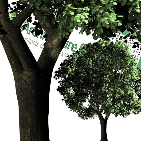 cu-out tree for architectural renders
