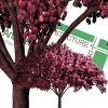 best quality cut-out trees PNG
