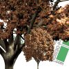 cut-out plane tree for download