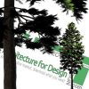 cut-out pine tree png