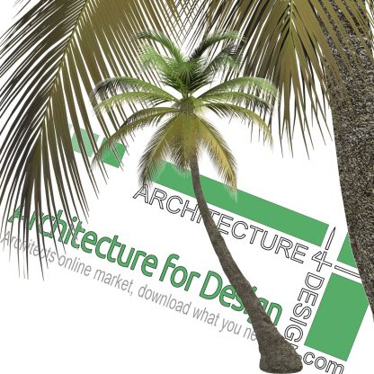 hi-resolution cut-out palm tree PNG