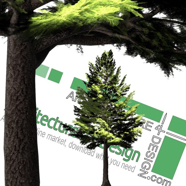 high-resolution cut-out pine tree