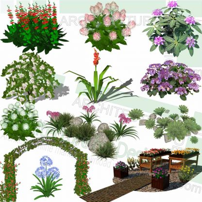 flowering plants SketchUp models and flower gate