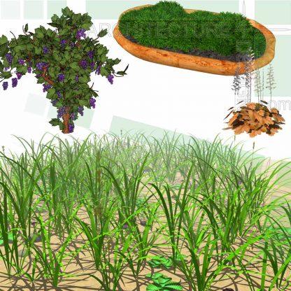 grass SketchUp models