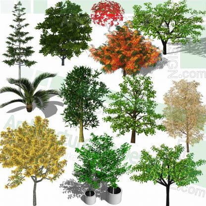 colorful trees SketchUp models