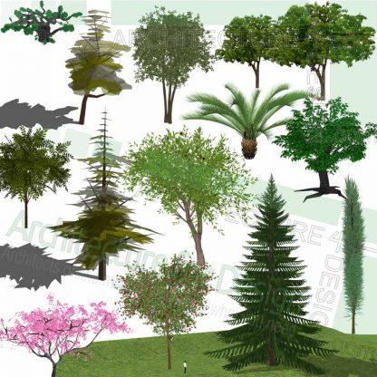 Pine trees SketchUp models